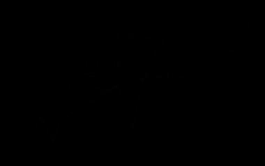 Icoon Social Allies 400x400